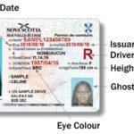 カナダで運転免許取得!落ちこぼれな私からのロードテストのアドバイス・・・