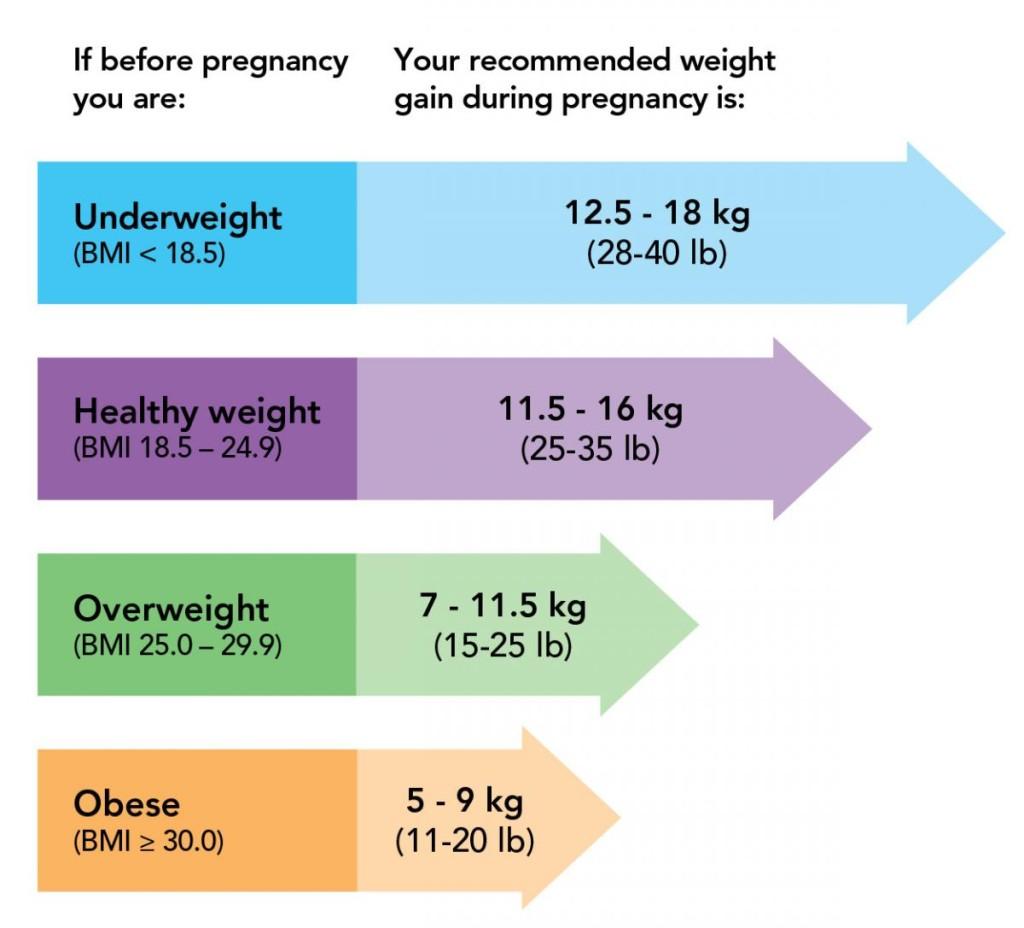 16キロ増えてもOK?!日本とカナダでは妊娠中の望ましい体重増加の範囲が異なる!