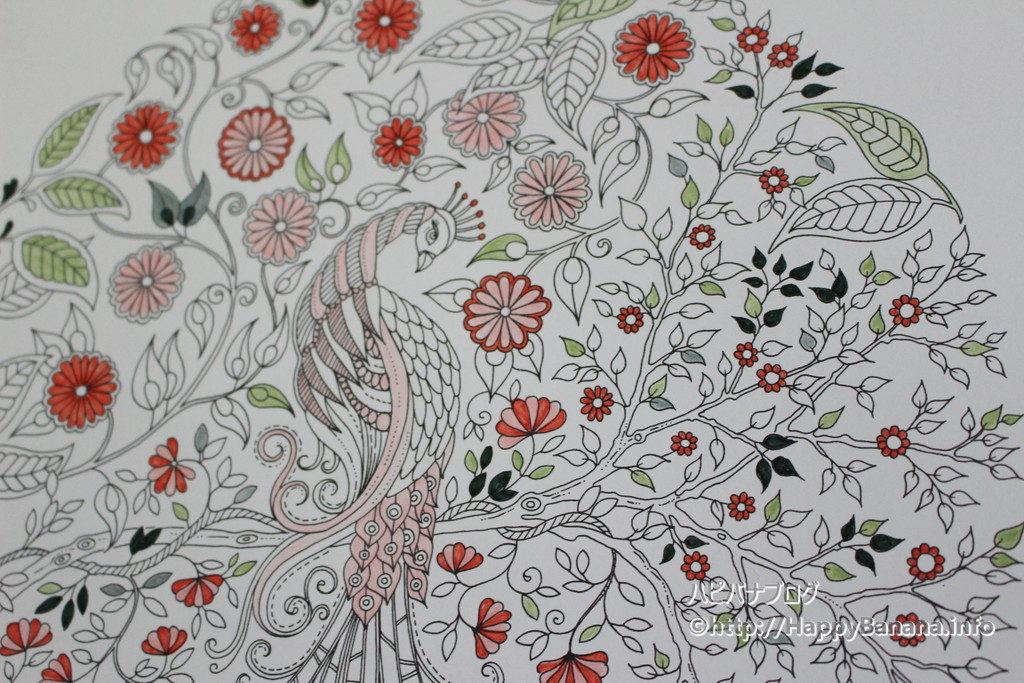 大人の塗り絵『ひみつの花園』8月、塗り絵だけど、あまり塗りませんでしたw