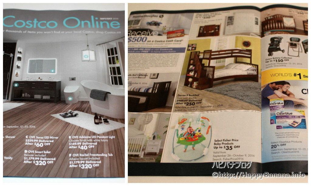 collage_photocat[1]