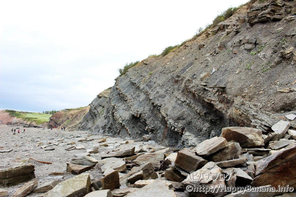 ノバスコシア観光|そこら中、化石だらけ!世界遺産ジョギンズ化石断崖は自分でも化石が探せるロマン溢れる海岸です!