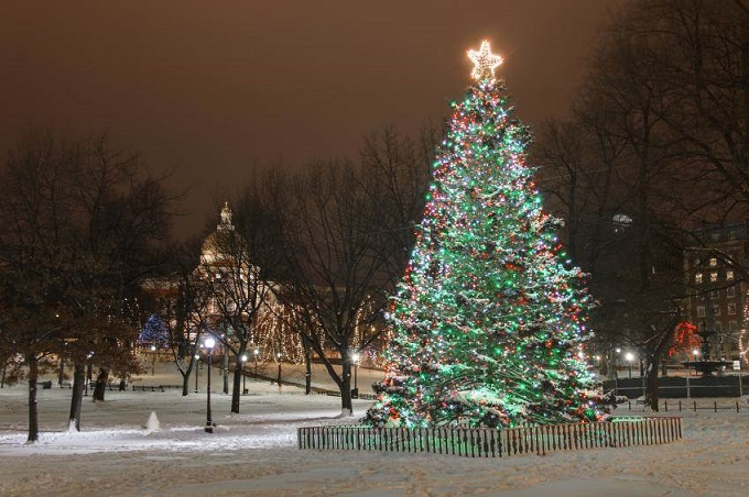635857344002861663-276919349_160658-849x565r1-christmas-tree-boston-common