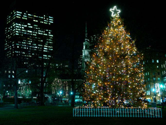 ノバスコシアからボストンへ100年前の感謝を込めて贈るクリスマスツリー。ハリファックス大爆発とツリー贈呈の理由