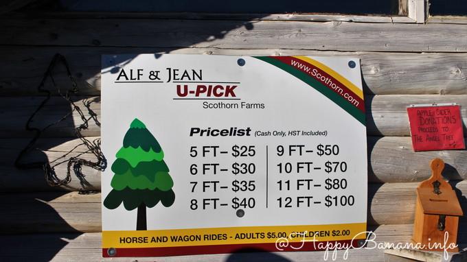 christmas_tree_upick_price