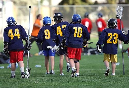 lacrosse-1501851_640