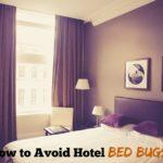 ホテル宿泊はベッドバグ(南京虫)に厳重警戒!被害防止の対策まとめ