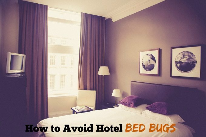 where-to-check_bedbug_in_hotel_top