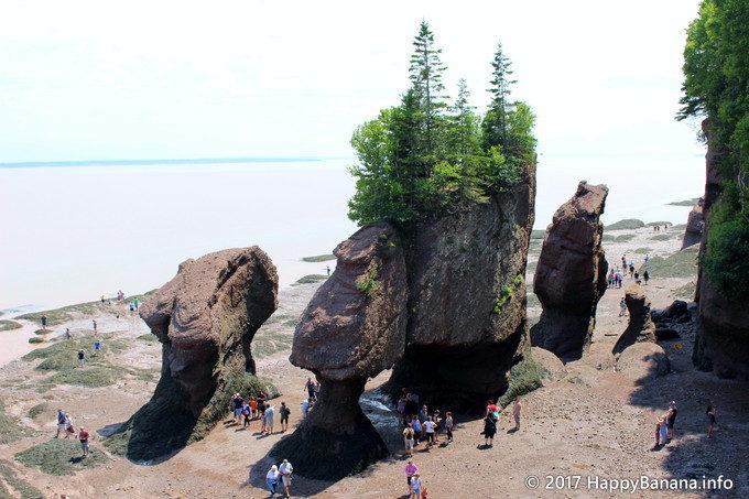 干満差世界一の驚異!カナダ東部「ホープウェルロック」は絶対訪れたい観光スポット