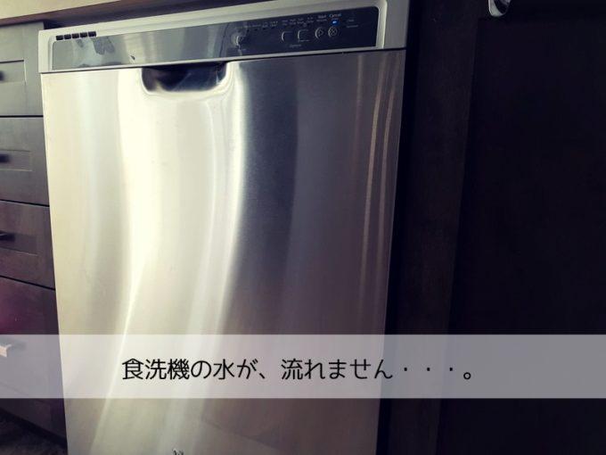 食洗機が排水されないピンチ!家にあるものだけで簡単解決できたよ!